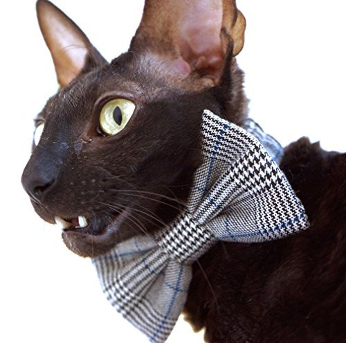 Kotomoda CAT WEAR Bow tie Lucky Luciano B078G7Z3RM
