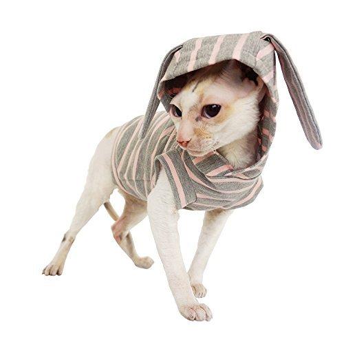 Kotomoda Cats Hoodie Easter Bunny B079YWCMY8
