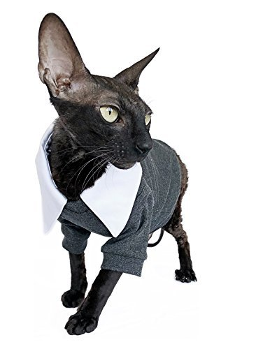 Kotomoda Cats SUIT WhiteCollar B07CR5MJCD