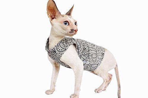 Kotomoda Cats T shirt Gray Cats B07B67VGWX