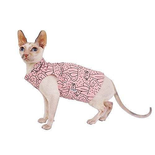 Kotomoda Cats T shirt Rose Cats B07B655HDS