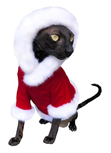 Kotomoda Sphynx Cats Hoodie Santa Claus Naked Cat Hairless Cat Clothes B0813K5XF9
